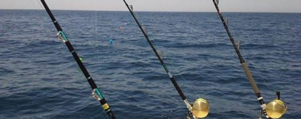 Alvor Fishing with Donzela