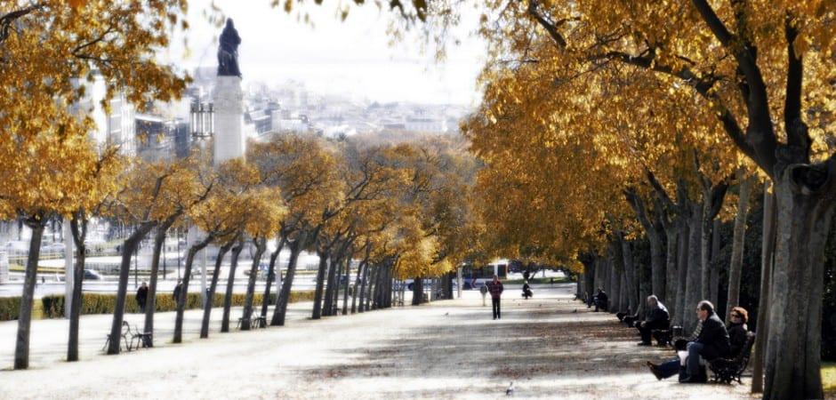 Autumn in Lisbon