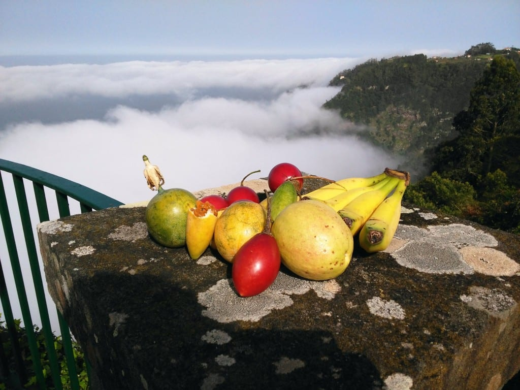 Tropical fruit in madeira