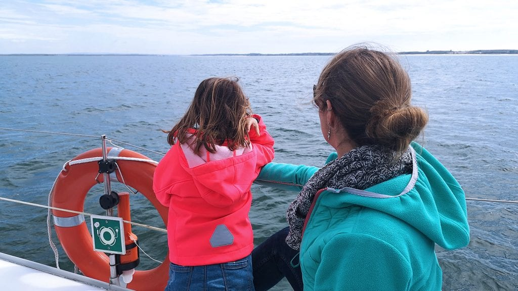 Kids love this dolphin watching tour in Setúbal