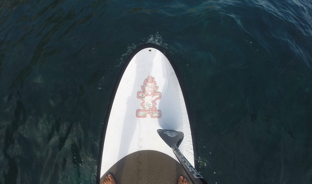 A big plus about paddle boarding? It's easy to learn!