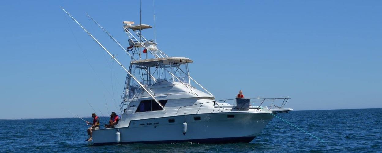 Cover for Tuna & shark fishing in Tavira