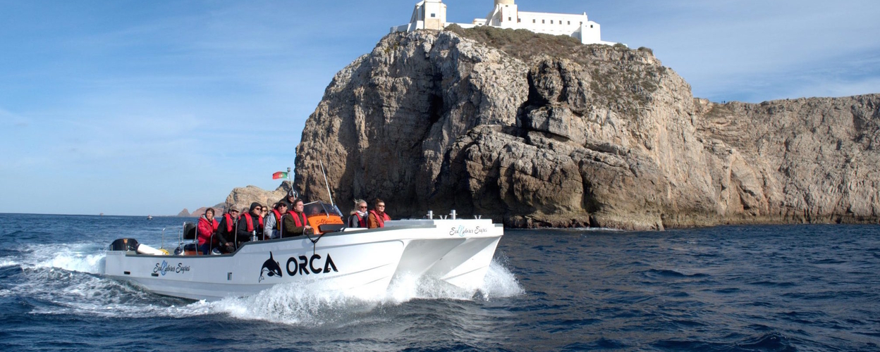 Cover for South coast boat trip from Sagres