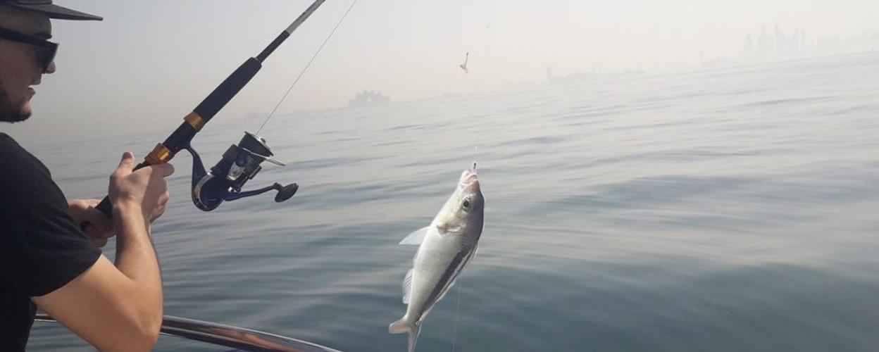 Cover for Full day fishing charter in Dubai