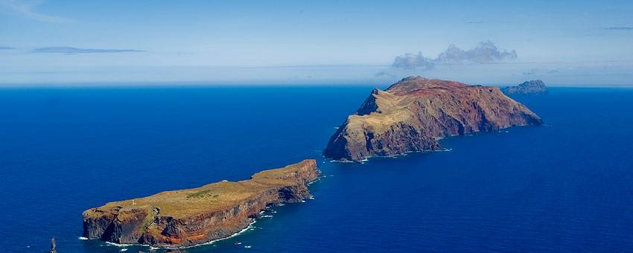 Cover for Boat tour to Desertas Islands in Madeira