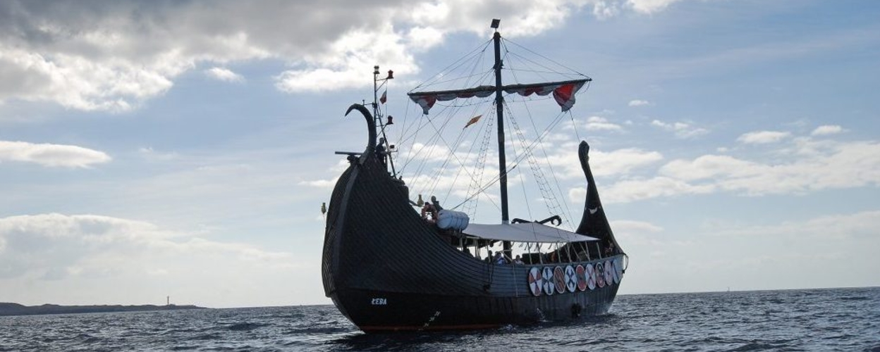 Whale and dolphin watching from a Viking ship in Tenerife
