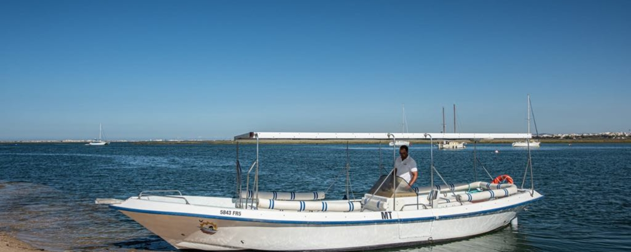 Ria Formosa Birdwatching Tour