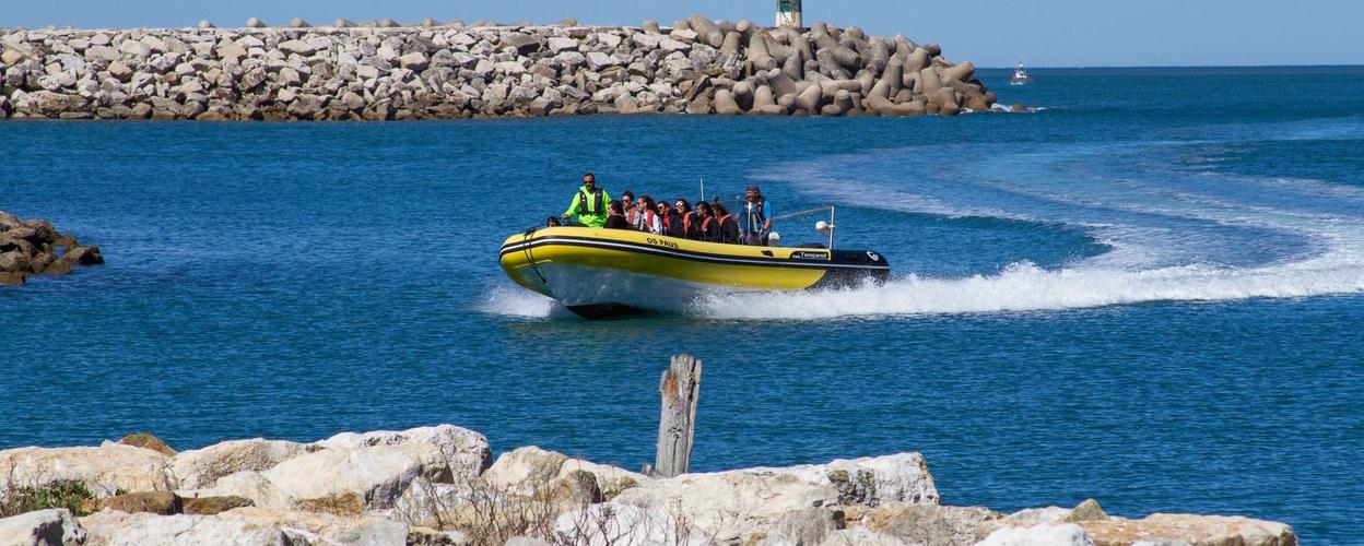 Coastal boat tour in Nazaré Cover