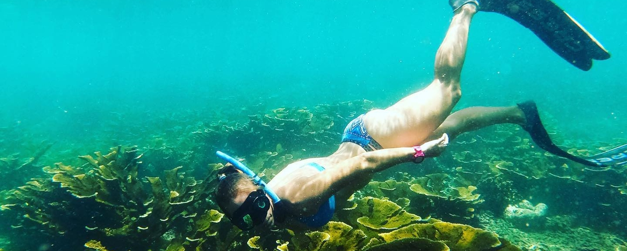 Private Snorkeling tour in Barbados