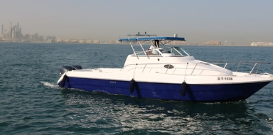 Cover for Half day private fishing tour in Dubai