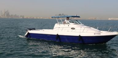 Cover for Half day private fishing tour in Dubai