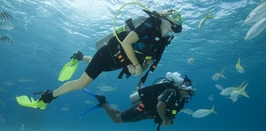 Cover for Scuba diver course in Gran Canaria