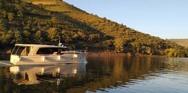 Private Boat tour in the Douro Valley with lunch Cover