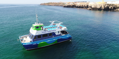 Cover for Boat tour to Berlenga Islands