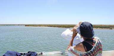 Faro boat tour Cover