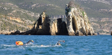 Swim in Sesimbra Cover