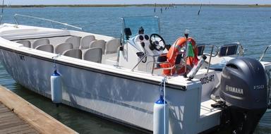 Boat charter in Ria Formosa Faro