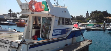 Our boat is ready. Are you?