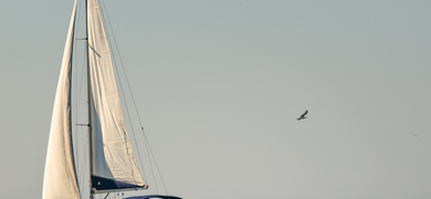 Enjoy the time on board of our magic sailing boat