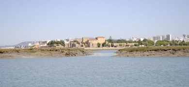 Enjoy the natural reserve Ria Formosa