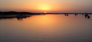 Boat tour Tavira SeaBookings (4)