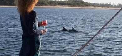 dolphin watching Lisboa - setubal