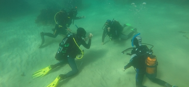 Cover for Scuba discovery - try diving in Sesimbra