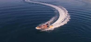 Cover for Boat trip from Praia da Luz to Sagres