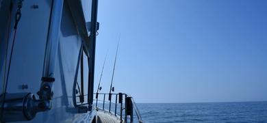 Cover for Bottom fishing in Albufeira - half day