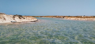 Cover for Snorkeling in Faro
