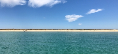 Cover for Private yacht charter in Faro - half day
