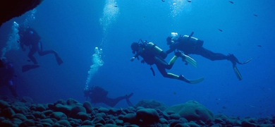 Cover for Scuba Diving in Santorini - 2 dives