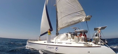 Sailing in Portimão - half day