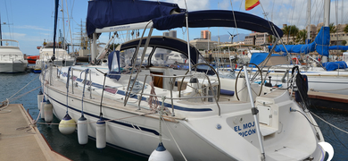 Dolphin & coastal sailing in La Palma