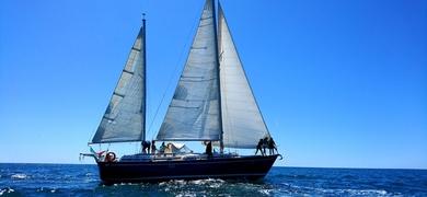 sailing in Albufeira