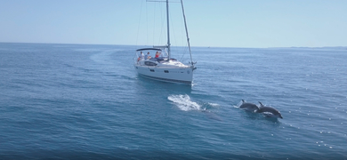 Cover for Private sailing charter in Benalmádena