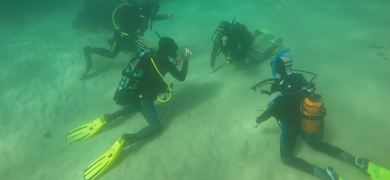Diving in Sesimbra is done in small groups