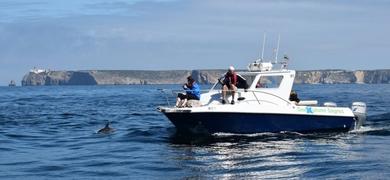 Sagres boat tour SeaBookings (3)