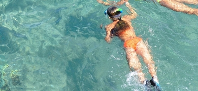 Go out snorkeling