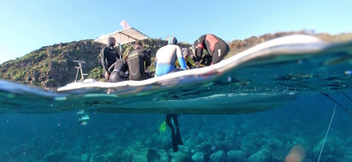 First time Scuba Diving in Sicily Cover