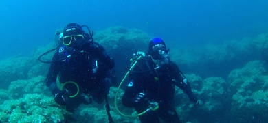 Join us for this fun scuba diving tour