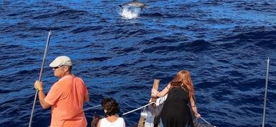 La Gomera dolphin watching