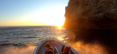 Wine and sunset cruise in Arrábida Cover