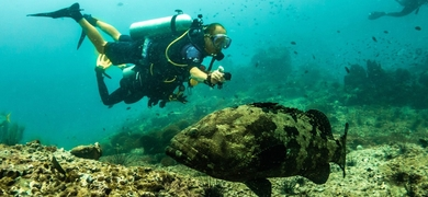 Cover for first scuba diving experience in Santa Pola