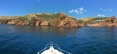 Boat tour to Berlenga Island