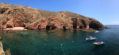 Boat tour to Berlenga Islands