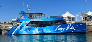 Boat trip to Berlenga Island