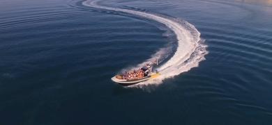 Sagres SeaBookings (4)