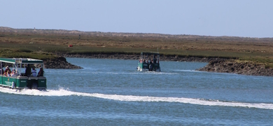 2 Islands Ria Formosa tour from Faro Cover