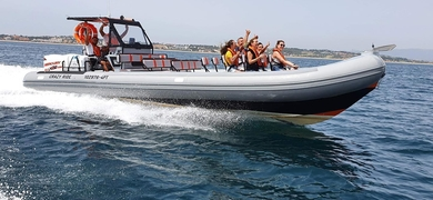Have a fun time on board on this dolphin watching trip in Lagos